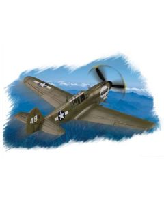 HobbyBoss 80252 Curtiss P-40N Warhawk 1/72 Scale Plastic Model Kit